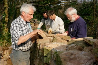 Dry stone wall course in Grove Woods