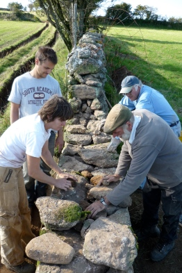Dry stone wall course at Higher Badworthy