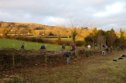 Hedge Steeping course