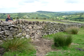 Dry stone wall training day